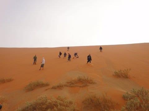 África do Sul, Namíbia, Zâmbia, Botswana: Grande Travessia do Kalahari, Uta Bodewig, 2010