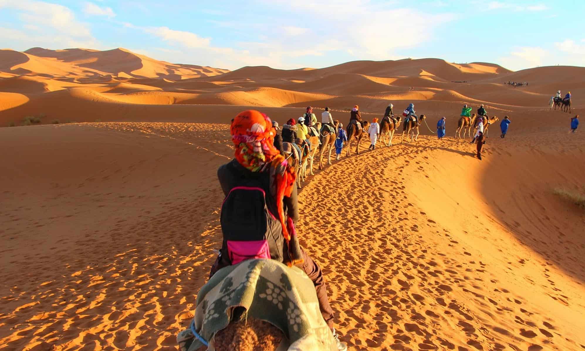 Caravana de Camelos Marrocos
