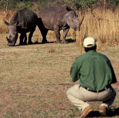 África do Sul, Zimbabwe, Botswana, Do Parque Kruger às Cataratas Victoria