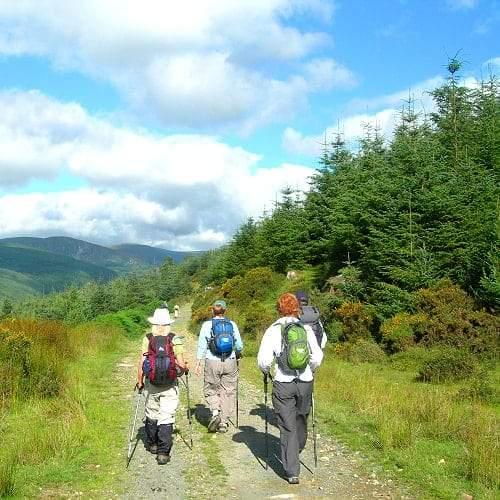 Irlanda, No Parque das Montanhas Wicklow