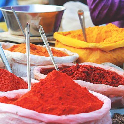 India: Na Rota das Especiarias
